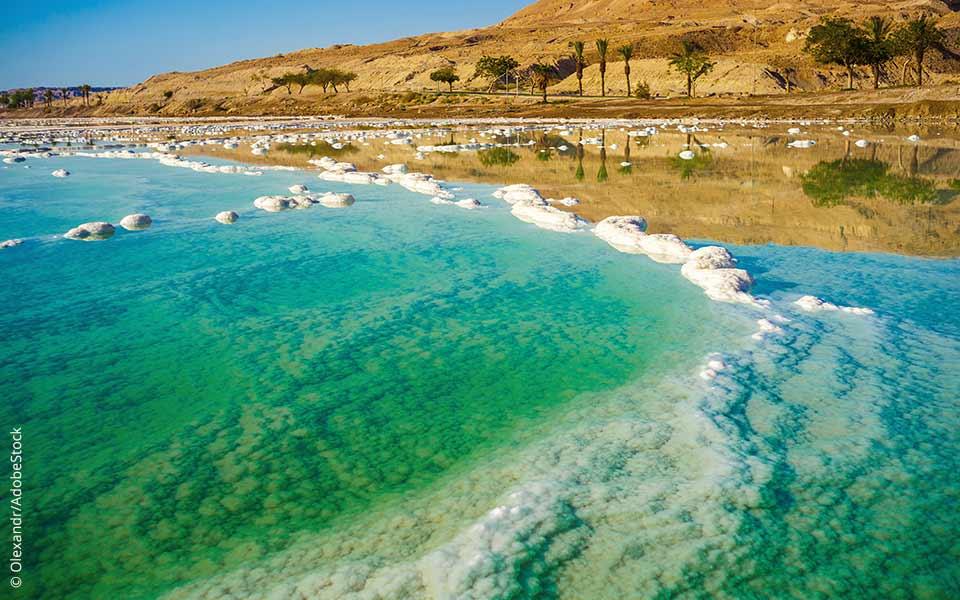 Leben im Toten Meer