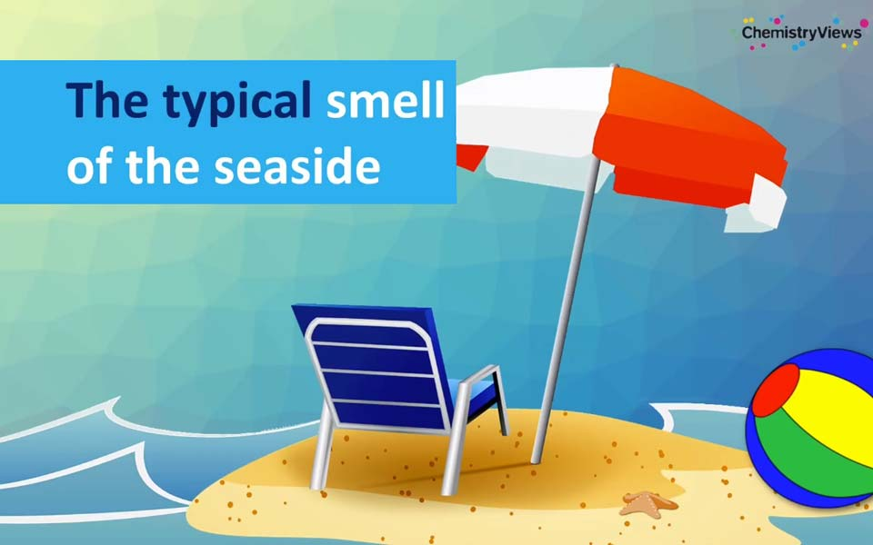 Where Does the Typical Sea Smell Come From?